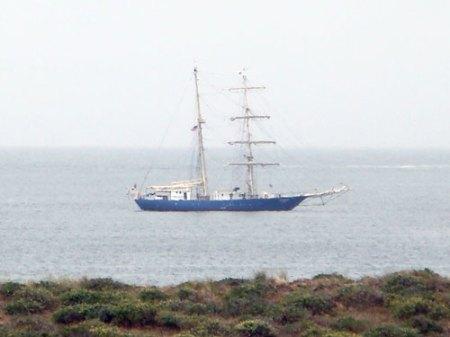 Bodega Bay Visitor 3