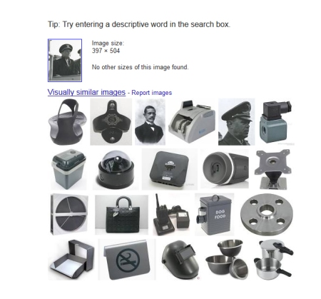 Google Image Search Could Use Some Fine Tuning